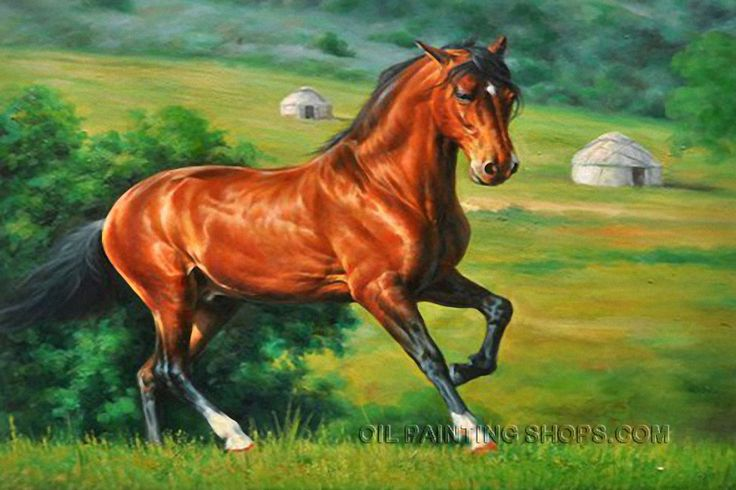 20 best jays paintings images on pinterest oil on