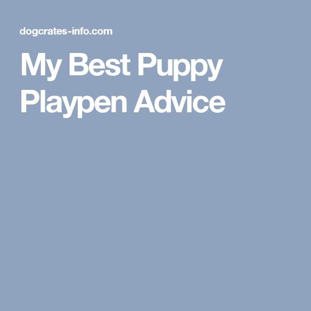 My Best Puppy Playpen Advice
