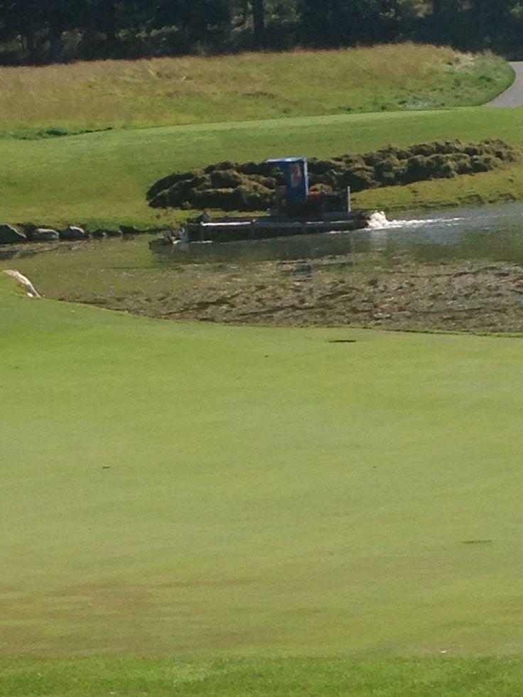 Dredger to remove algae and pond scum.  Great idea!