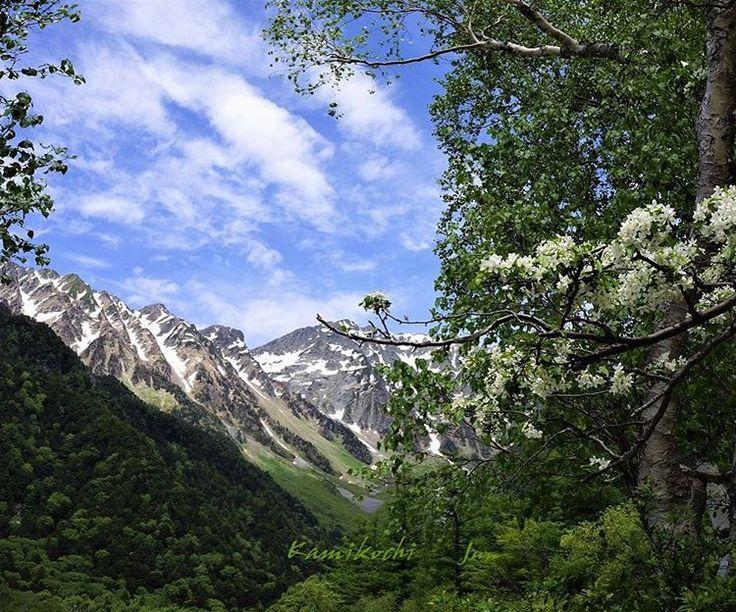 ���� おはようございます…☕️ 2017 . 5 . 17 ☀️ 今日から������お出掛けです コメント欄は閉じさせて頂きますね… ���� ・ ・ ��上高地・立山黒部アルペンルート・室堂へ �� 今日のpostは 昨年5月半ば頃の ⛰上高地です。 ・ ① 上高地 ・ ( Kamikochi ). . コナシの花…真っ白な5枚の花弁 コナシが満開でした [ バラ科・リンゴ属 ] 背後は 穂高連峰です… ・ 今日の上高地 ・ …どんな姿で迎えてくれるかな? 心は happiness❣️ ・ ・ #上高地 #Kamikochi #山 #雲 #空 #風景 #自然 #絶景 #コナシ #はなまっぷ #はなまっぷ2017 #flowers #flowerslovers #flowerslover #flowerpic #floweroftheday #flowerstyles_gf #fm_flowers_ #flowerphotography #ip_blossoms #flower_special_ #kings_flora #ファインダー越しの私の世界 http://ge