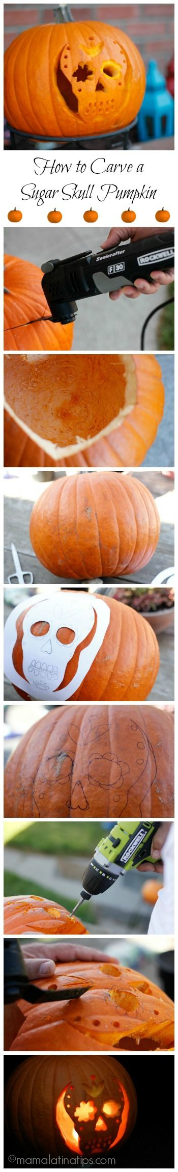 Best 20+ Skull pumpkin ideas on Pinterest | Sugar skull pumpkin ...