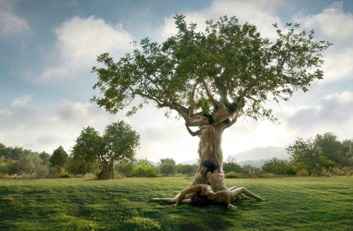 La familia está viva en la piel, en el cuerpo, está hablando. Hasta tal punto que podemos reconocer a nuestro árbol por la huella que éste ha dejado en nosotros.