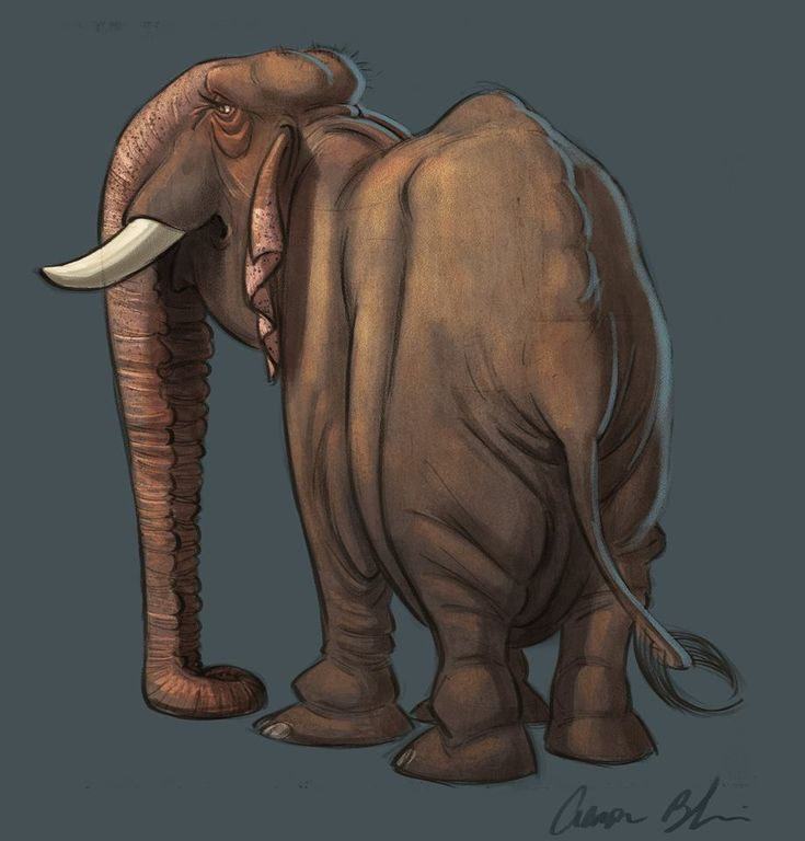 Mejores 22 imágenes de Elephant en Pinterest | Elefantes, Diseño de ...