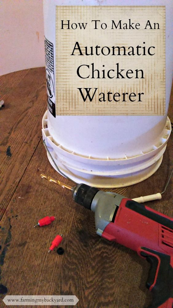 Make an easy chicken waterer to keep your flock happy.