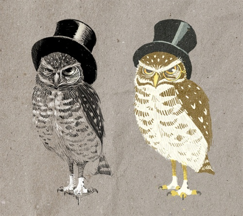 Owls by Roland's Revue