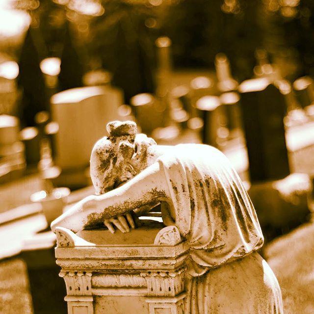 Il dramma della vita non è la morte ma ciò che ci muore dentro mentre siamo ancora in vita. Perciò su con il morale e avanti sempre... c'è sicuramente chi sta peggio di noi!!! #adhocband #enjoy #live #music #rock #vita #morte #morire #dentro #suconlavita #forza #amici #pensieri #mattino #pensierimattutini #Padova #Treviso #Vicenza #Verona #Venezia