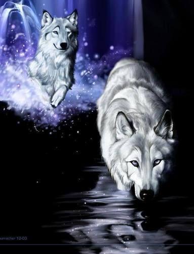 Fan Art of Fantasy Wolves for fans of Fantasy.