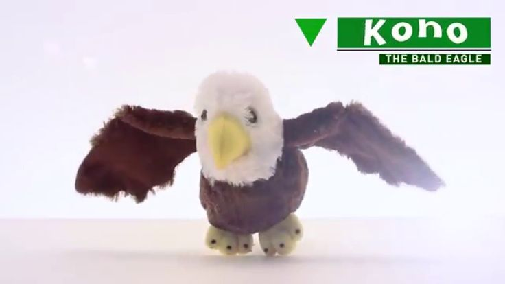 Koho the bald eagle stuffed animals http://www.theearthrangersshop.com/collections/all-products/products/bald-eagle-plushie
