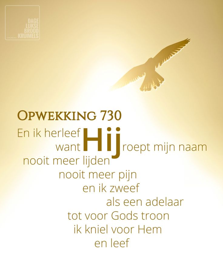 En ik herleef want Hij roept mijn naam – Opwekking 730   http://www.dagelijksebroodkruimels.nl/quotes-christelijke-muziek/opwekking-730/