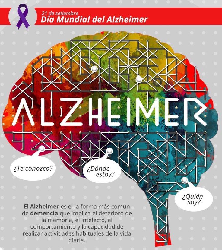 Hoy se conmemora el día mundial del Alzheimer, y desde Psyciencia queremos aprovecharlo para fomentar la toma de conciencia y acercaros algunos recursos que os pueden ser de mucha utilidad. El organismo que proclama este día como el día mundial del Alzheimer es La Organización Mundial de la Salud (OMS), y realizó la Primera Conferencia …