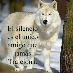 El silencio es el único amigo que jamás traiciona