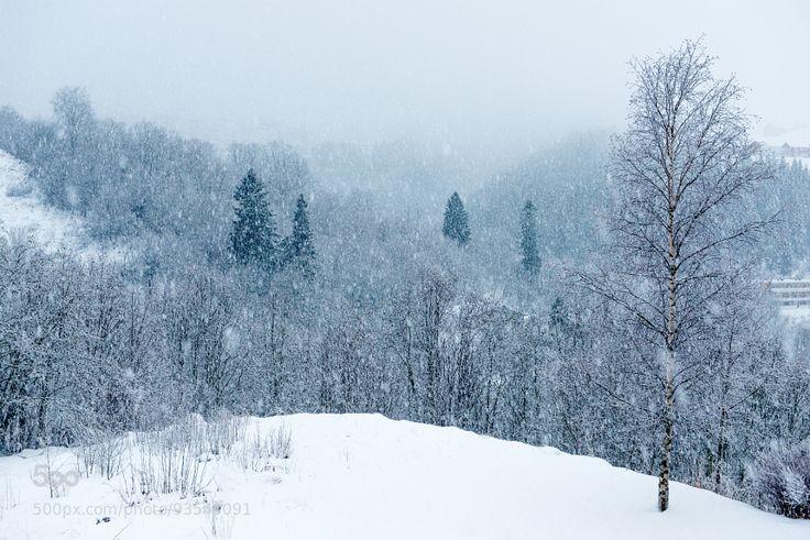 Light & Sound: Let it snow