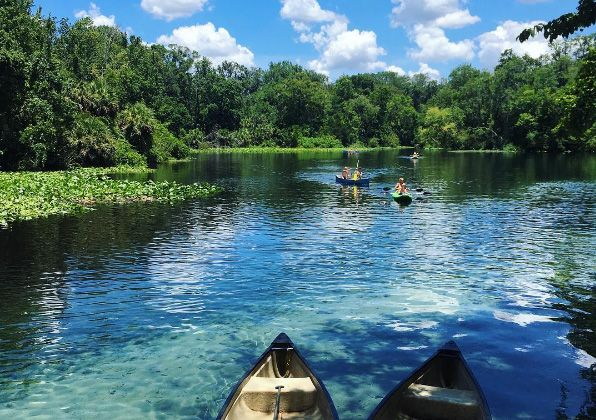These are the closest natural springs to Orlando and yet you'll feel miles away. Kayaking, swimming, snorkeling and hiking can all be enjoyed here. You'll see tortoises, alligators, bir…
