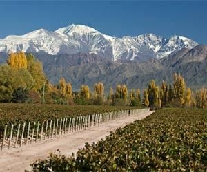 Our wineries... http://www.5-stars-of-argentina.com