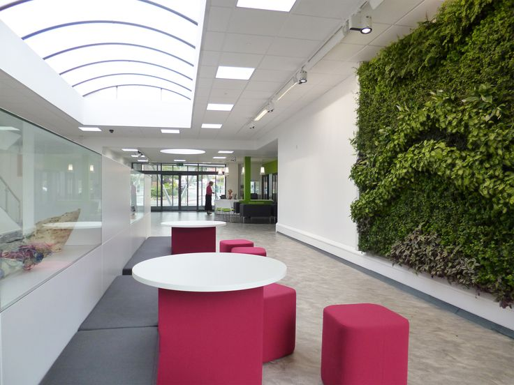 The Green Wall, Huddersfield New College