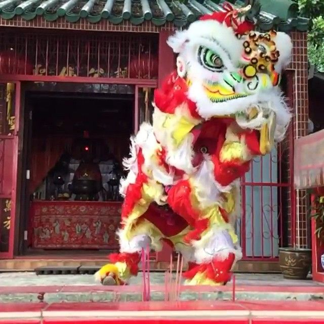 """""""The Lunar New Year ushers in the Year of the Sheep this week, and lion dances are one of the many symbolic traditions observed during the holiday. The…"""""""