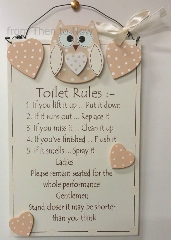 Toilet Rules Wooden Owl Bathroom Wall Door Plaque Sign Cream Hearts Chic Shabby