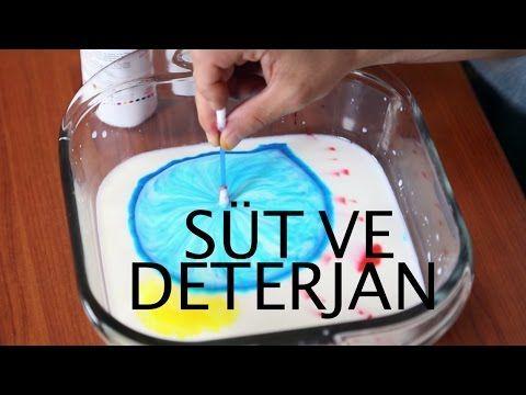 Süt ve deterjanla eğlenceli bir deney yaptık. Bir kulak pamuğunu deterjana bandırıyoruz. Sonra sütün üzerine gıda boyası damlatıyoruz. Kulak pamuğunu süte so...