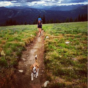 Great tail-friendly hikes to do with your dog