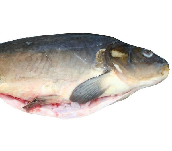 65 besten Mediterraner Fisch Bilder auf Pinterest | Mediterran ...
