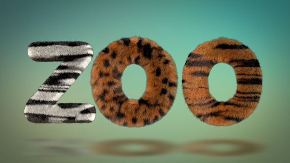 Hairy Zoo Text
