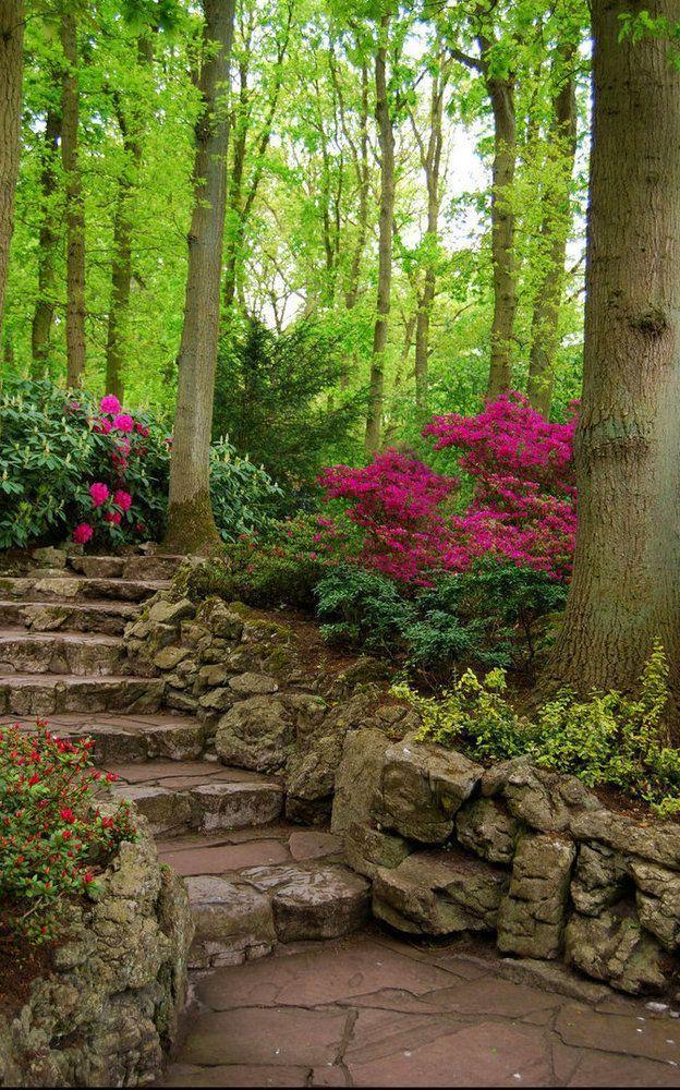 Escaliers de pierre • JARDIN SECRET • SECRET GARDEN • STAIRS •