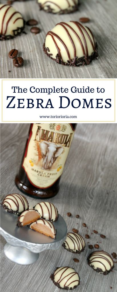The Complete Guide to Zebra Domes