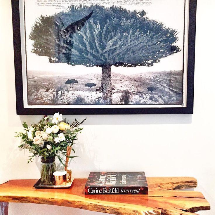 43 Best Dining Room Inspo Images On Pinterest