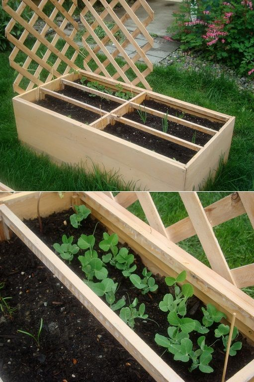 Recycled dresser into raised garden bed