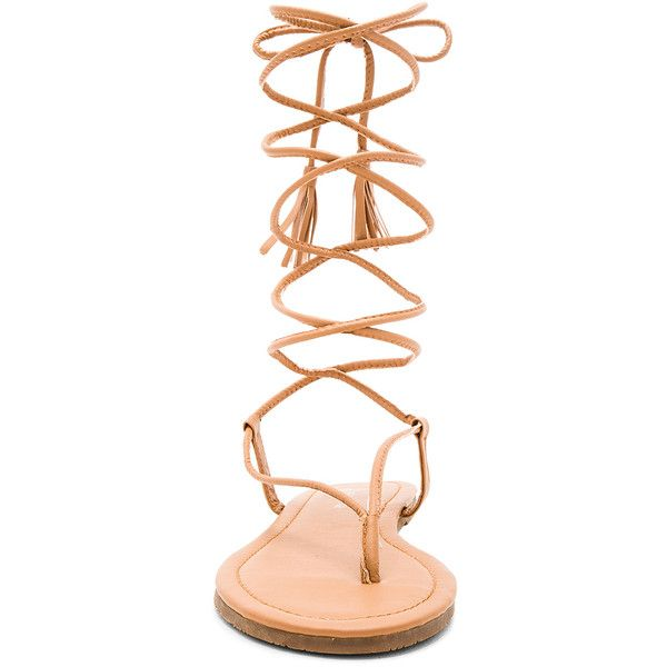 PILYQ Gladiator Sandal ($66) ❤ liked on Polyvore featuring shoes, sandals, wrap sandals, lace-up gladiator sandals, lace up shoes, gladiator sandals shoes and synthetic shoes