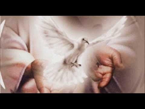 El Espíritu Santo concédenos siete dones: Sabiduría, Entendimiento, Consejo, Fortaleza, Conocimiento, Piedad y Temor de Dios. El Consolador distribuye dones como quiere para el máximo benefi…