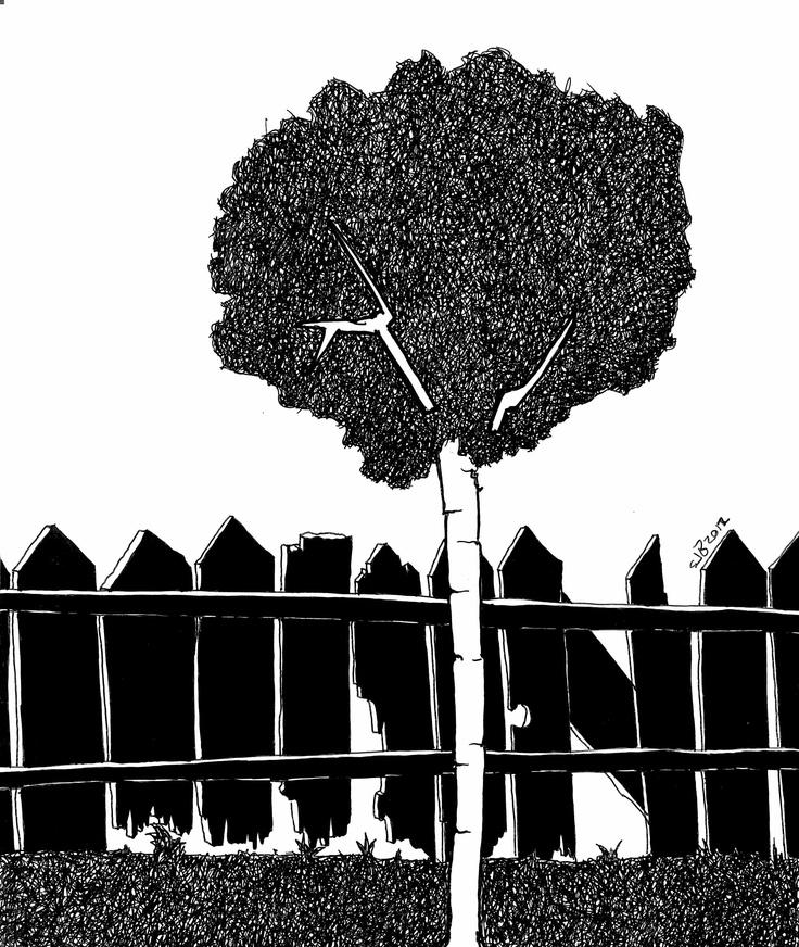 cuando tenga un jardin en blanco y negro se va a ver así