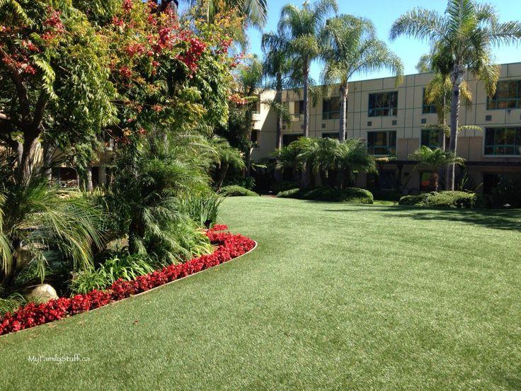 Sheraton La Jolla hotel review