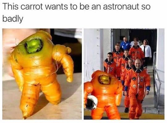 9 Spectacular Carrots That Have A Wonderful Life Than Human.