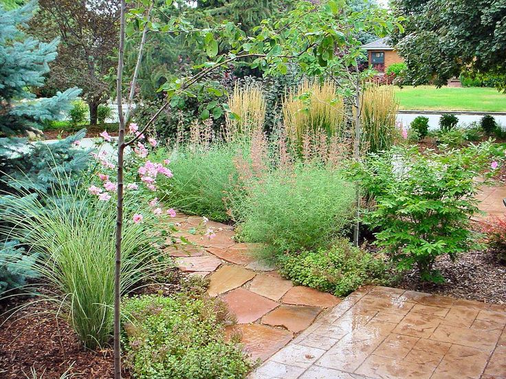 17 best images about xeriscape on pinterest drought for Landscape design utah