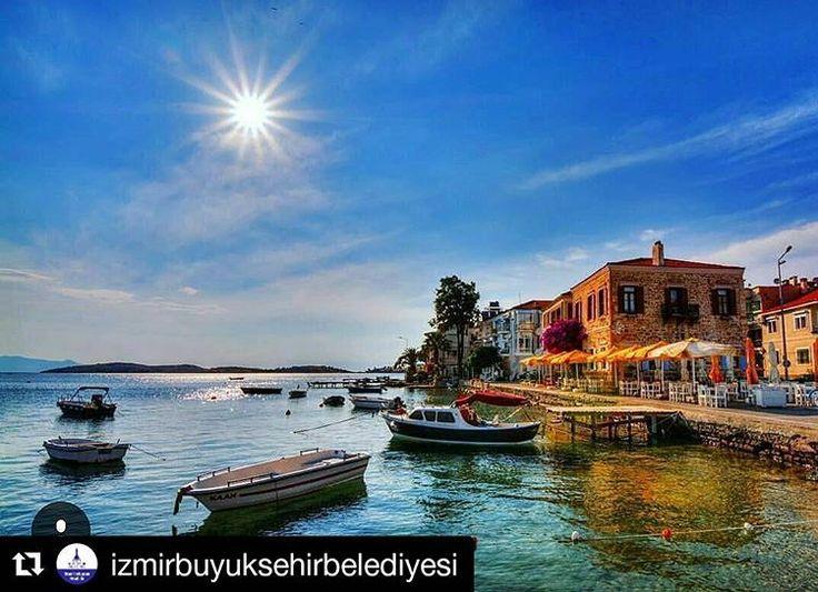 @focabelediyesi'in bu Instagram fotoğrafını gör • 69 beğenme