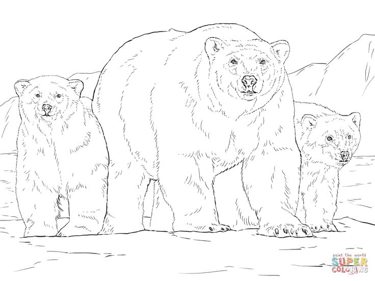 polar bear with two cubs coloring page supercoloringcom noord en zuidpool pinterest polar bear and bears