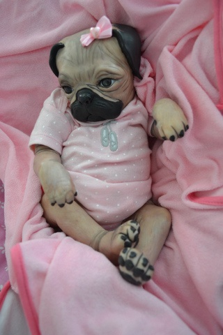Baby Pugs Pug Puppies And Reborn Babies On Pinterest
