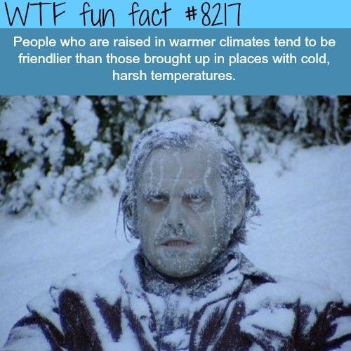 Fun Facts | Very Interesting! | Fun Facts, Wtf Fun Facts ...