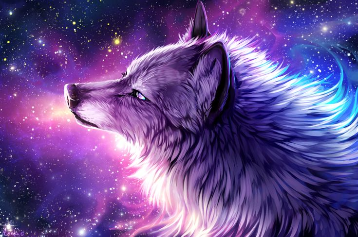 Hello I'm Galaxy, I control the Stars and their colors! My fur changes colors with the sky my eyes change color with my emotions.