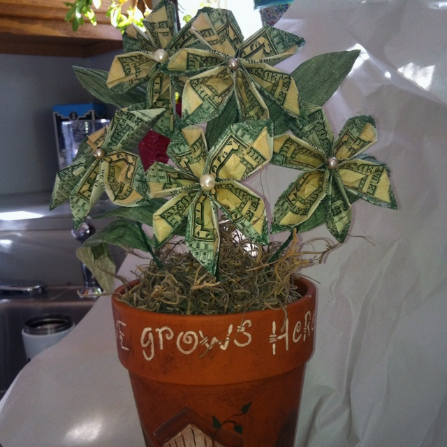 10 best money tree images on pinterest money trees marriage a money tree i made for my friends daughters wedding negle Image collections
