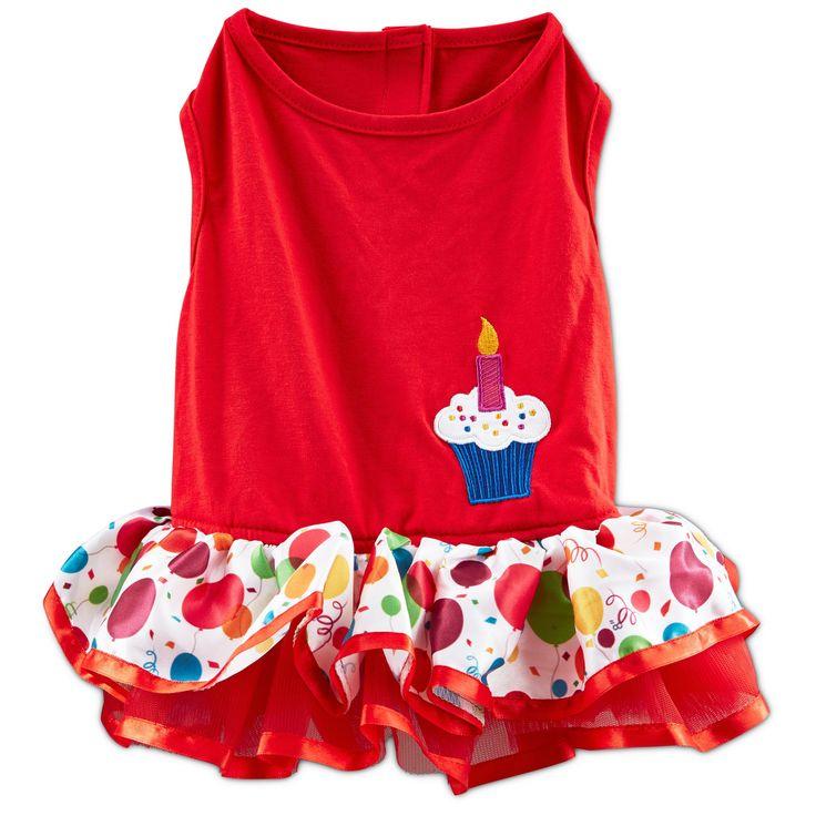 1000+ Ideas About Dog Birthday Cupcakes On Pinterest