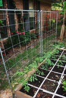 85 Best Images About Square Foot Gardening Ideas On Pinterest Tomato Cages Raised Beds And