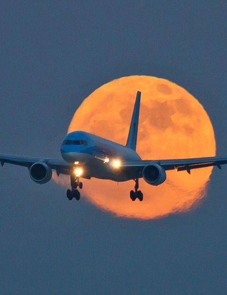 380 Ideas De Aviones Como Pájaros En El Aire En 2021 Aviones Fondos De Aviones Fondos De Pantalla Aviones