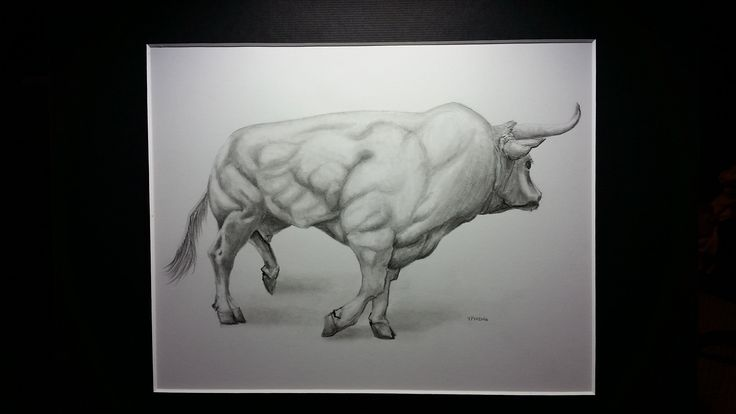 Bull Drawing. This is a study of a raging bull. It is a one of a kind piece rendered in graphite on quality multi-media paper. It is matted to 11 X 14 inches. This an original (not a print). It has been sprayed with a protective fixative to preserve it for many generations to come. A handmade gift card will be included with order if the GIFT MESSAGE is selected.