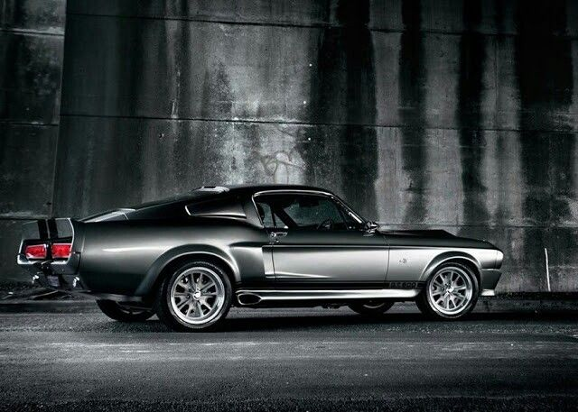 69 Shelby GT500 Mustang