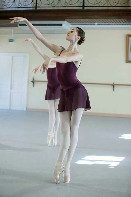 The Vaganova Academy of Russian Ballet is a school of classical ballet in Saint Petersburg, Russia. Established in 1738 during the reign of Empress Anna, the academy was known as the Imperial Ballet School up until Soviet times, when, after a brief hiatus, the school was re-established as the Leningrad State Choreographic Institute.