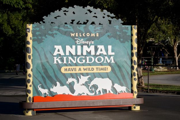 Things You Probably Never Knew About Disney Parks 28. You can see a dragon on the signs for Animal Kingdom, and a dragon's head hanging above the front gates. They were there to represent a scrapped area called Beastly Kingdom, which was going to be dedicated to mythical animals.