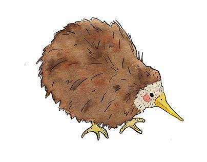 82 best Kiwi images on Pinterest | Kiwi, Neuseeland und Amazonas