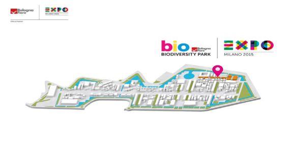 Una mappa del Biodiversity Park, realizzato da BolognaFiere a Expo MIlano 2015